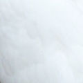 Pigeon Feather Colour White.jpg