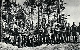 f3aab23adda Polish Legions in World War I - Wikipedia