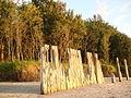 Plaża w Kołobrzegu DSC02502.JPG