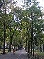 Planty krakowskie - panoramio.jpg