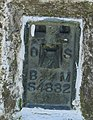 Plate on Langton Caudle triangulation point - geograph.org.uk - 726030.jpg