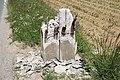 Plateau de Saclay le 4 juin 2013 - 103.jpg
