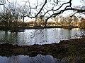 Pond, Newells Lane - geograph.org.uk - 92271.jpg