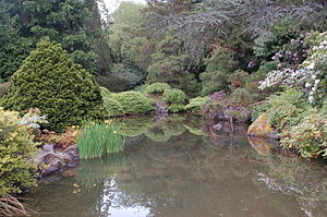 Kubota Garden - Image: Pond at Kubota Garden in Seattle Washington