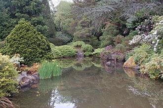 Kubota Garden - Image: Pond at Kubota Garden in Seattle Washington