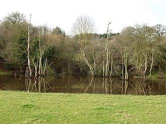 Hutton Conyers - Pond formed in gypsum depression near village