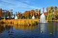 Pond in Mezhygirya Park, Ukraine, Kyiv.jpg