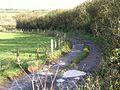 Pot holed lane - geograph.org.uk - 1367135.jpg