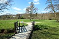 Prairie de Jaumeron à Gif-sur-Yvette le 29 avril 2015 - 09.jpg