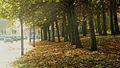 Princess Road in Autumn, Moss Side, Manchester, UK.jpg