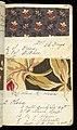Printer's Sample Book (USA), 1882 (CH 18575251-46).jpg