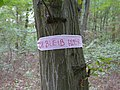 Protest banner in the Hambach forest 01.jpg