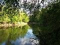 Psilskyi Landscape Reserve (05.05.19) 19.jpg
