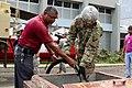 Puerto Rico National Guard (37369889672).jpg