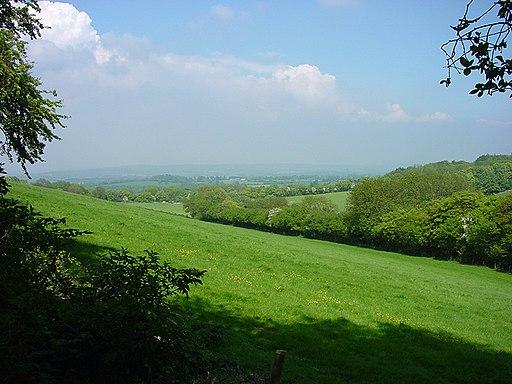 Queen Elizabeth Country Park - panoramio