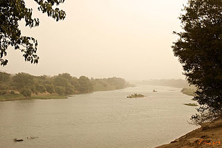 Falémé River