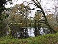 Río Parga cerca de Guitiriz (Lugo, Galicia, España) 04.JPG