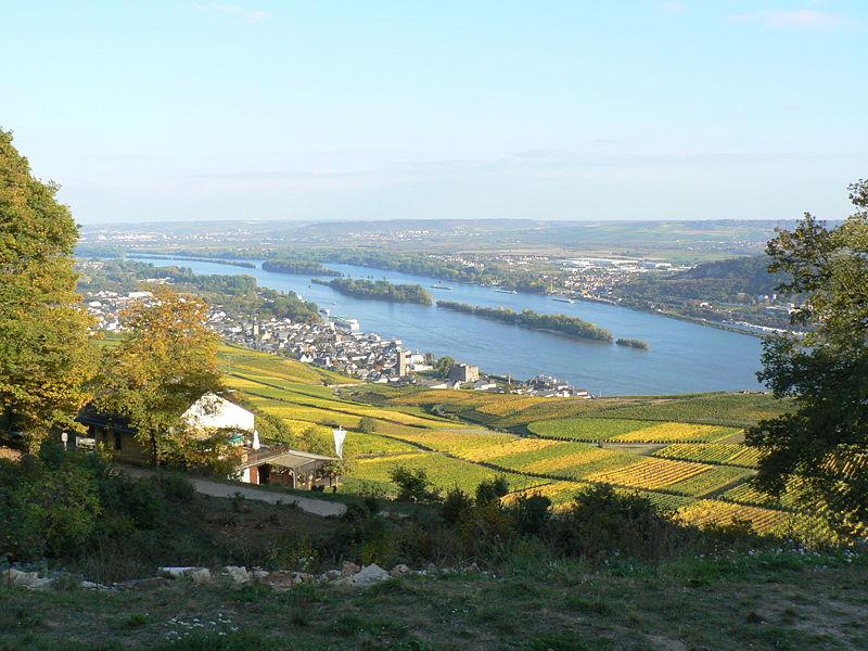 File:Rüdesheim Rhein Vom Niederwalddenkmal.jpg