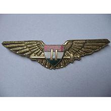 Aviator badge - Wikipedia