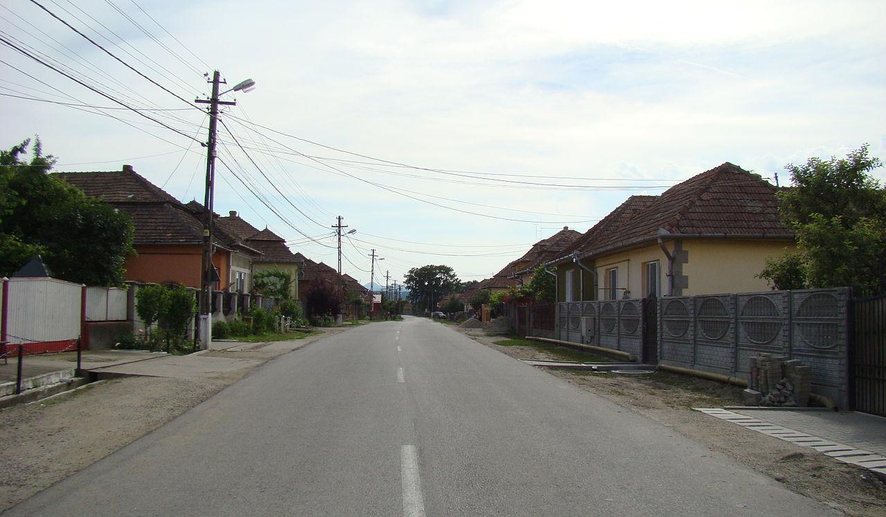 RO AB Sancrai 2014 (11).JPG
