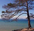 RU Baikal Olhon 11.jpg