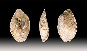 Industria lítica musteriense, típica de los neandertales