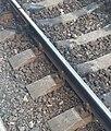 Rail at Gori railway station.jpg