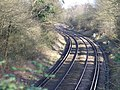 Railway Line, Fetcham - geograph.org.uk - 676379.jpg