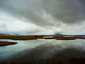 Rain at Klamath Basin National Wildlife Refuge.jpg