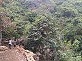 Raniduduma waterfall Koraput Odisha.jpg