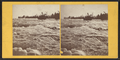 Rapids and Goat Island, by John B. Heywood.png