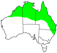 Red-backed fairy wren range.PNG