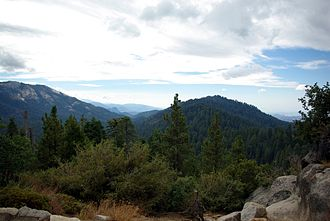 Redwood Mountain Grove - View of Redwood Mountain Grove area, from Redwood Mountain Overlook in Kings Canyon National Park