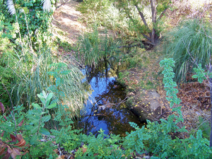 Refugio Creek - Refugio Creek by Creekside Center in Hercules, California