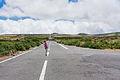 Região autónoma da Madeira em Julho de Dois Mil e Quatorze IMG 4190 (14877227185).jpg