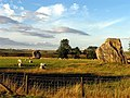 Remains of Avebury Stone Circle - geograph.org.uk - 34356.jpg