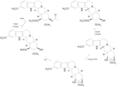 Reserpin Reserpinsynthese Isoreserpin.PNG