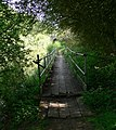 Rickety footbridge close to Saddington Tunnel - geograph.org.uk - 417635.jpg