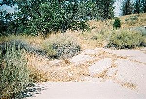 Sandberg, California - All that was left of the Sandberg Inn in 2006