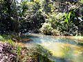Rio dentro da área do centro indígena Kanidé.JPG
