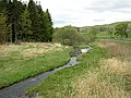 River Carron - geograph.org.uk - 170263.jpg