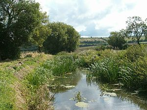 River Cary (Somerset) - Image: River Cary