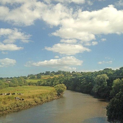 River Dart (28878370535)