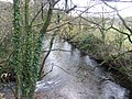 River Erme - geograph.org.uk - 623828.jpg