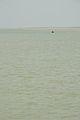 River Padma - Paturia-Daulatdia - 2015-06-01 2806.JPG