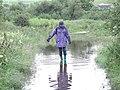 River Ure Floods Lane - geograph.org.uk - 406283.jpg