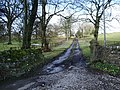 Road to Townhead, Slaidburn - geograph.org.uk - 739596.jpg