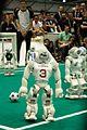 RoboCup 2016 Leipzig - Standard Platform League (42).jpg