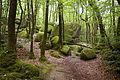 Rochers des Gorges du Corong et la végétation.JPG