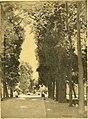Romantic Germany (1910) (14784810875).jpg